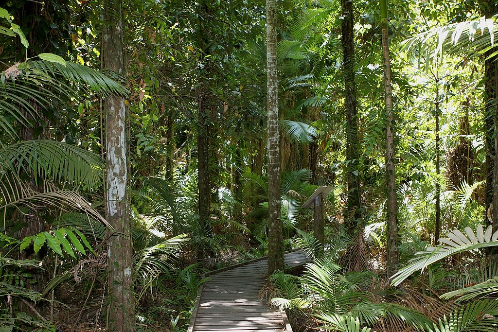 natural wedding venues in cairns